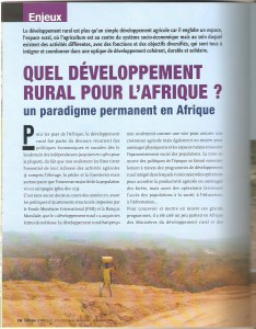villages d'afrique article.jpeg